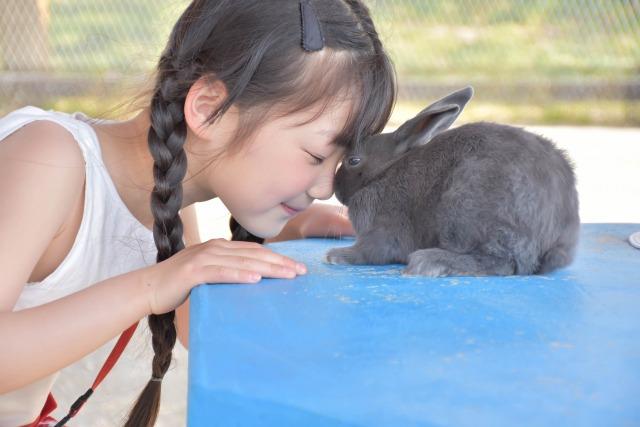 【動物好き】外国人シッターおすすめの英語絵本